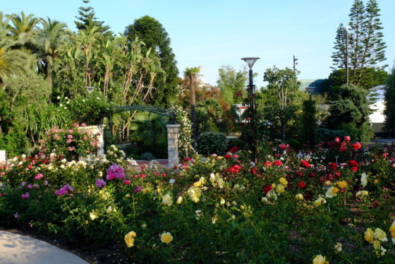 Monaco-Garden-Princesse-Grace